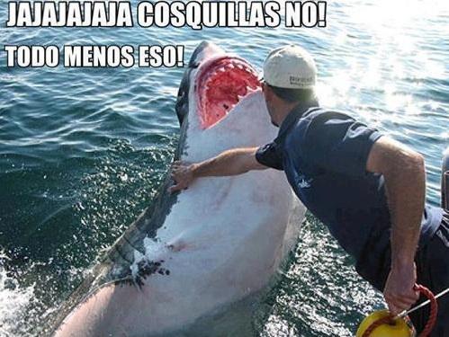 memesgraciososparawhatsapp9