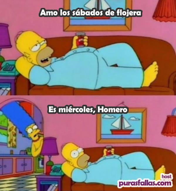 Memes de los Simpson 5