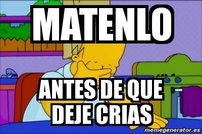 Memes de los Simpson 7