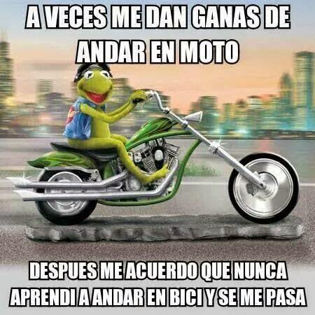 memesdelaranaypiggy4