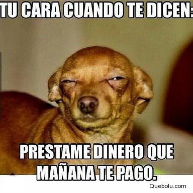 memesdedinero4
