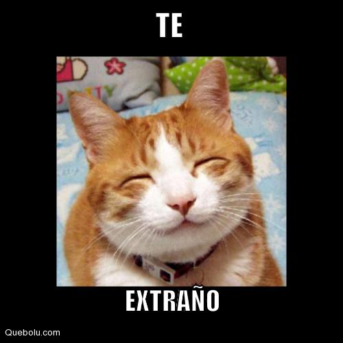 memesdeteextraño8