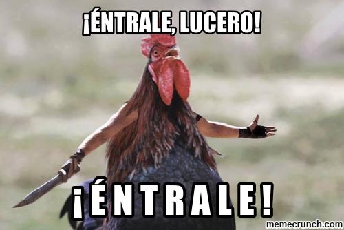 memes de gallos1