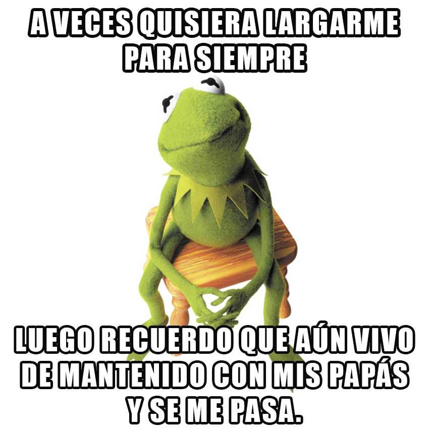 memesgraciososdelarana12