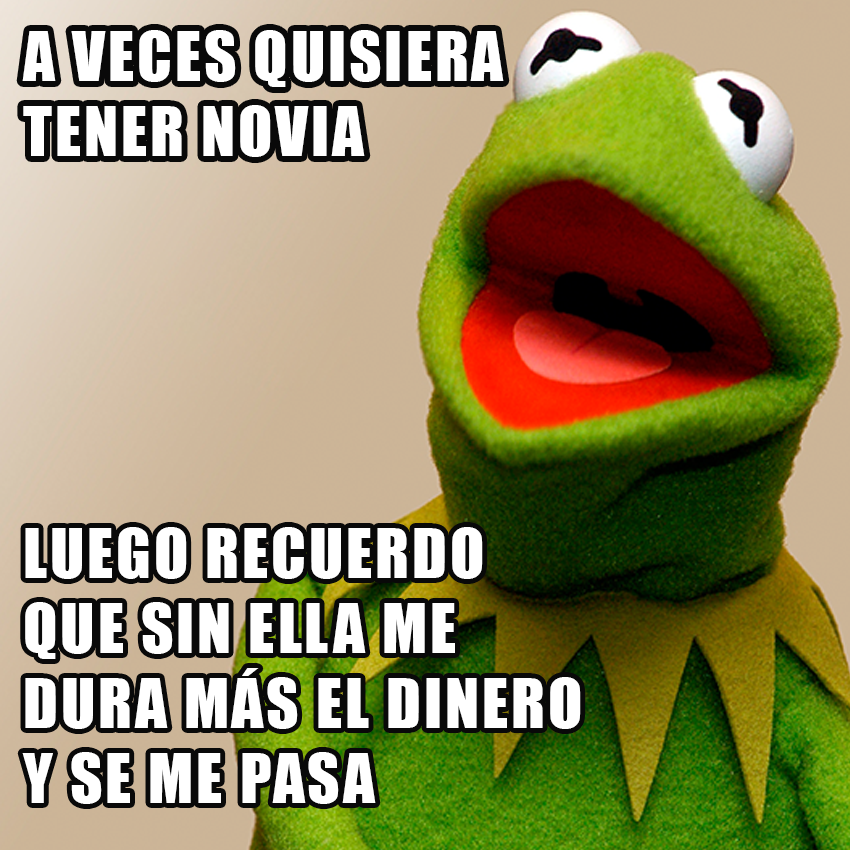 memesgraciososdelarana13