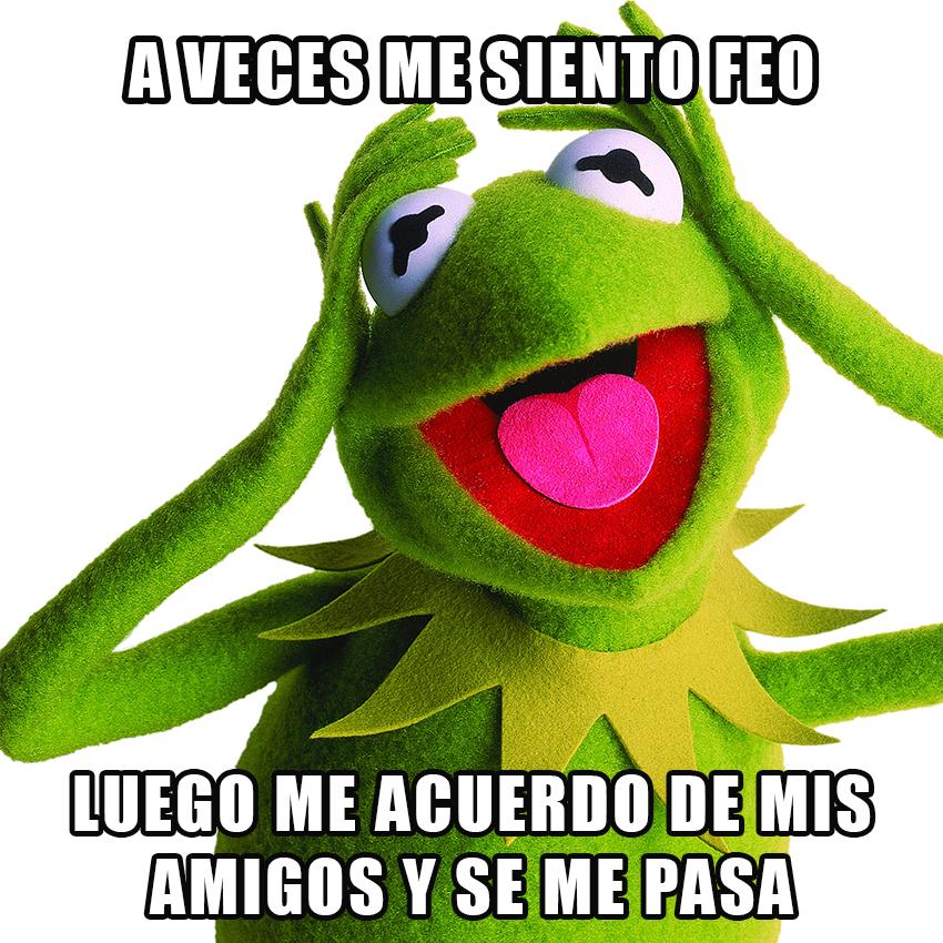 memesgraciososdelarana14