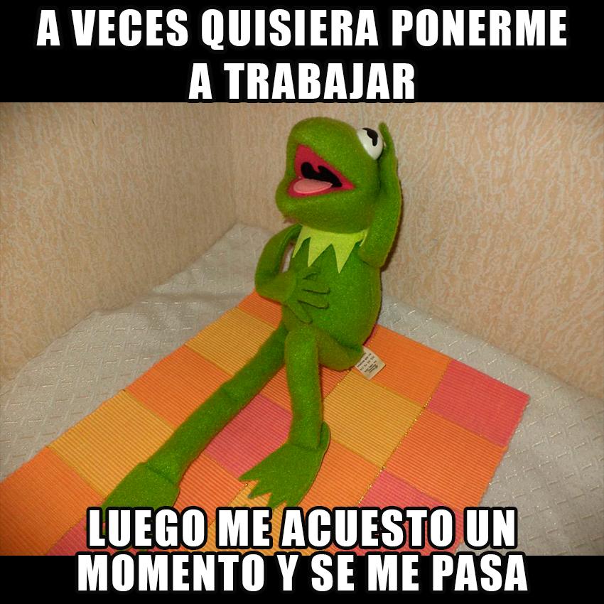 memesgraciososdelarana15