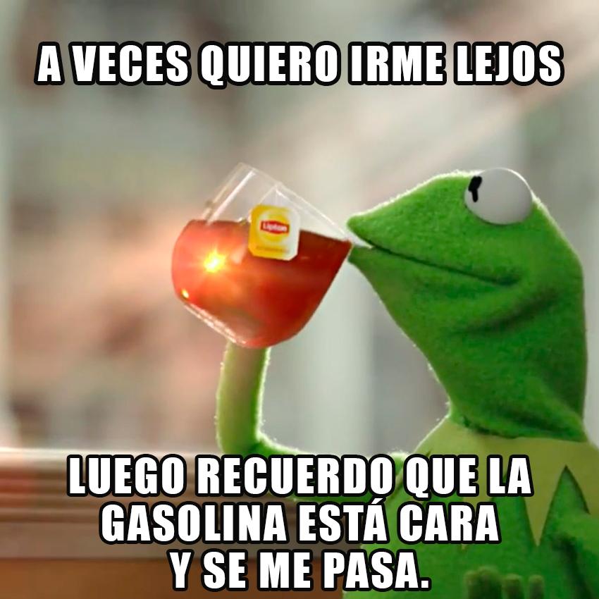 memesgraciososdelarana16
