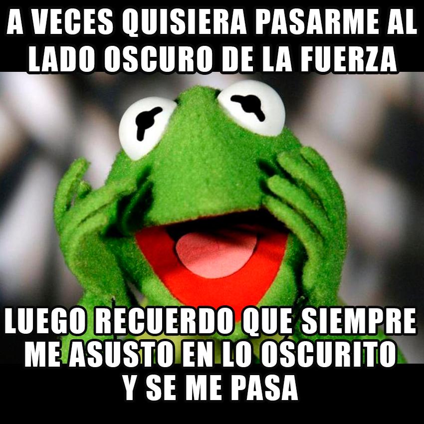 memesgraciososdelarana17