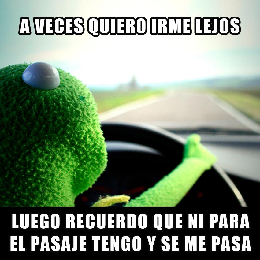 memesgraciososdelarana3