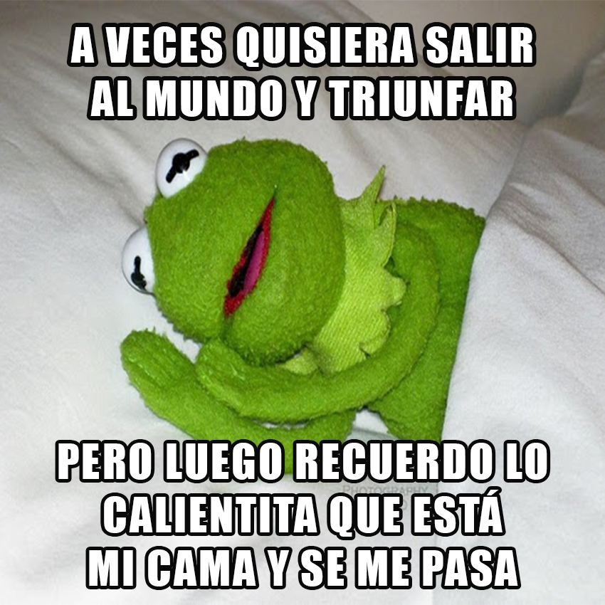 memesgraciososdelarana5