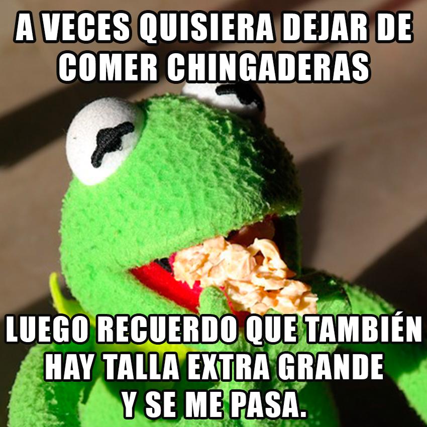 Memes de la Rana Rene - Imagenes chistosas