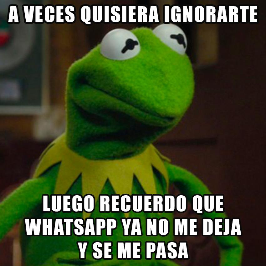 memesgraciososdelarana9