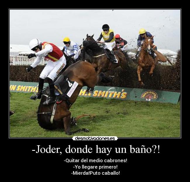 memes de caballos12