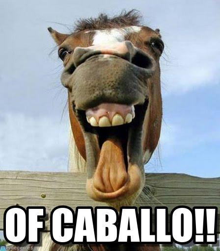 memes de caballos5