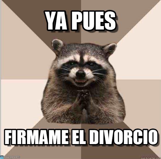 memes de divorcio1