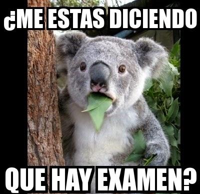 memes de examenes23