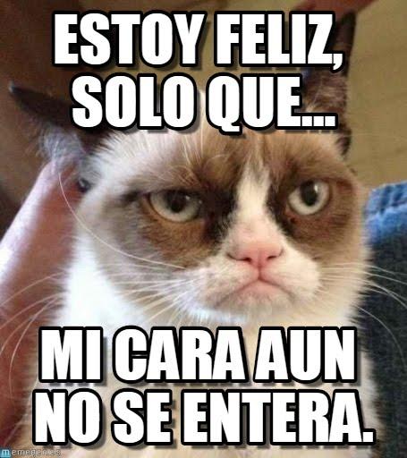 memes de felicidad9