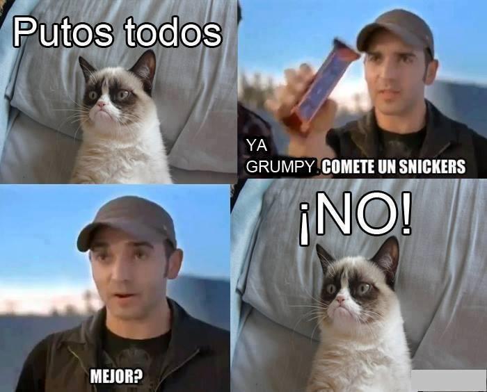 memes de grumpy cat10