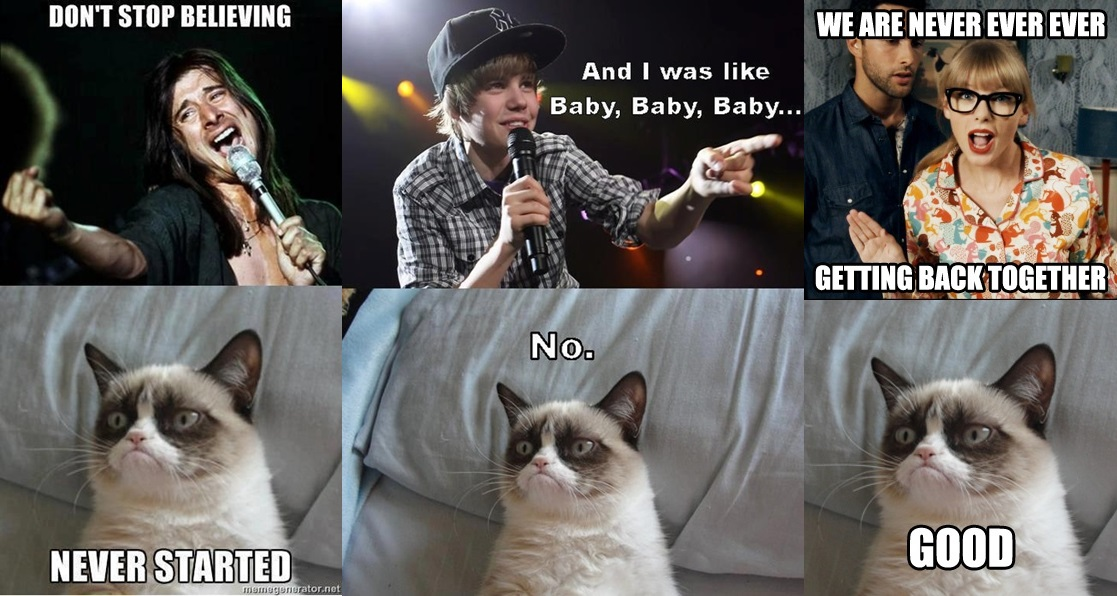 memes de grumpy cat15