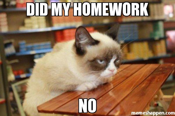memes de grumpy cat17