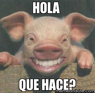 memes de hola13