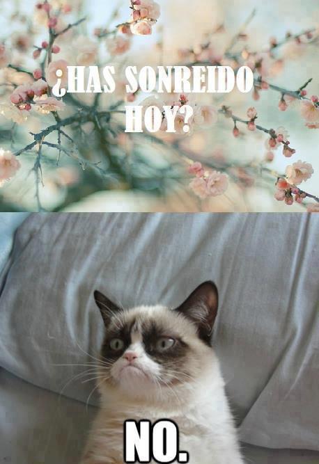 memes de enojo22