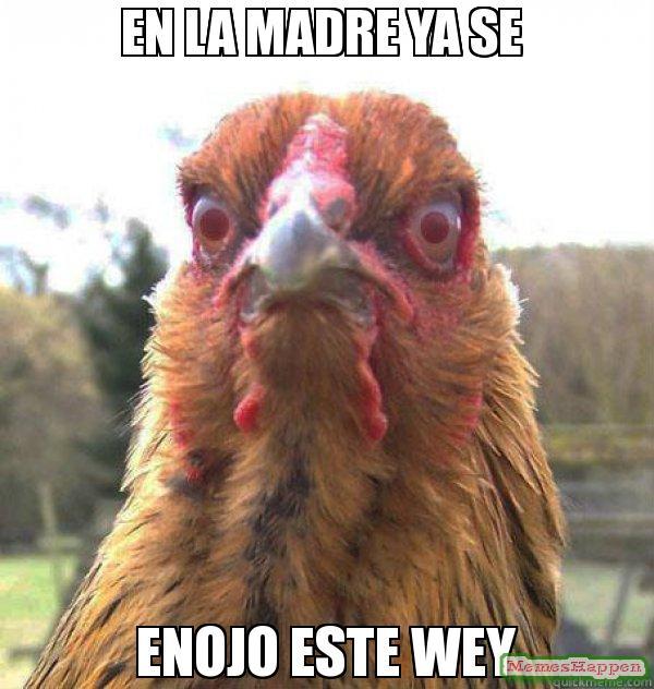 memes de enojo23