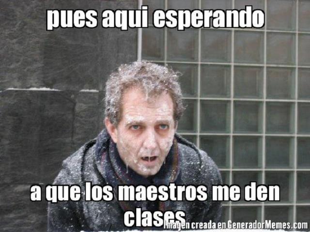 memes de maestros15