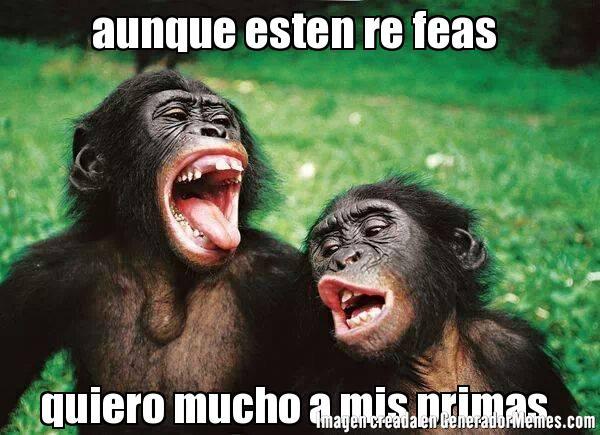 memes de primas12