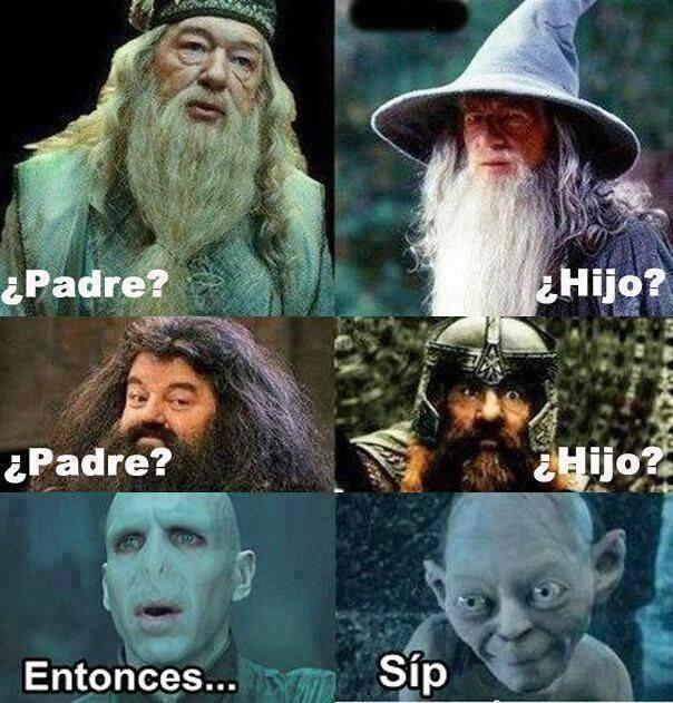 memes de harry potter11