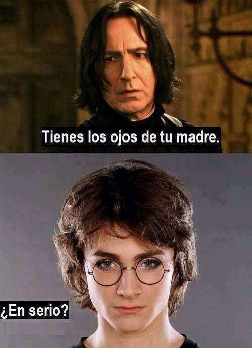 memes de harry potter12