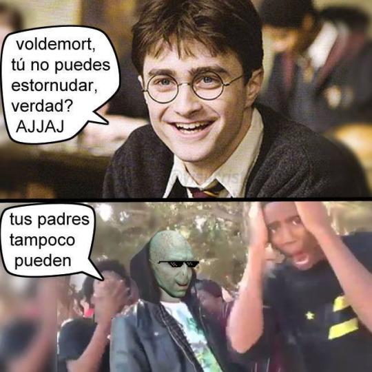 memes de harry potter21
