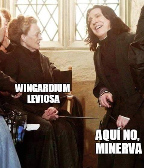 memes de harry potter4