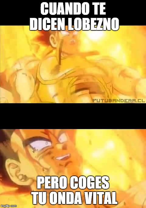 memes de dragon ball z36