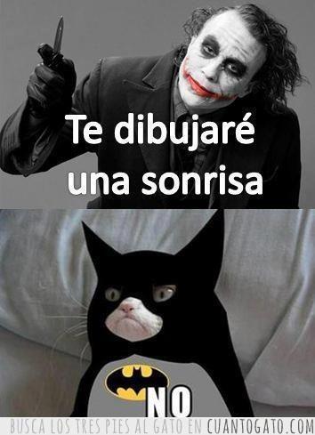 memes de gatos9
