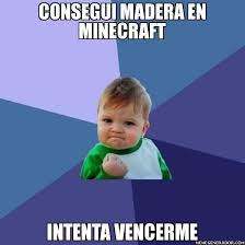 memes de minecraft5