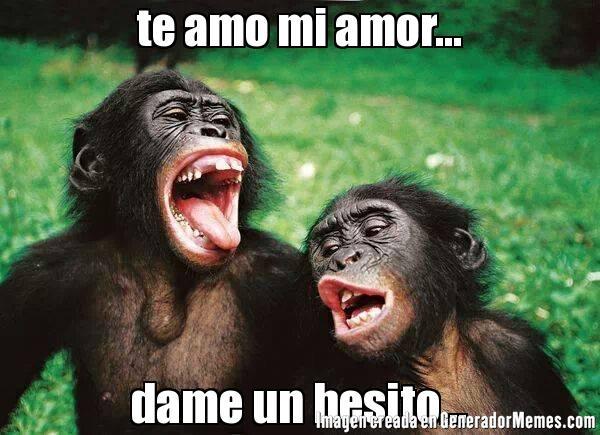 memes de te amo1