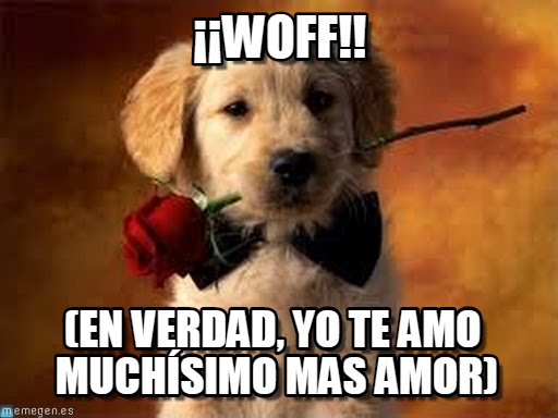 memes de te amo13