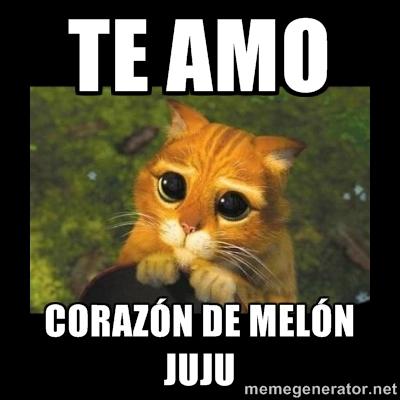 memes de te amo3
