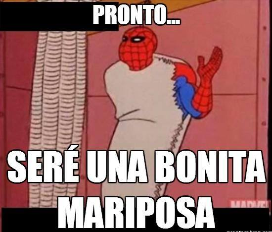 memes del hombre araña4