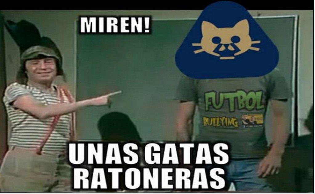 memes de pumas1