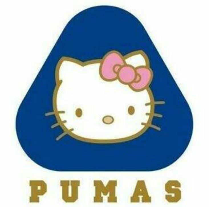 memes de pumas23