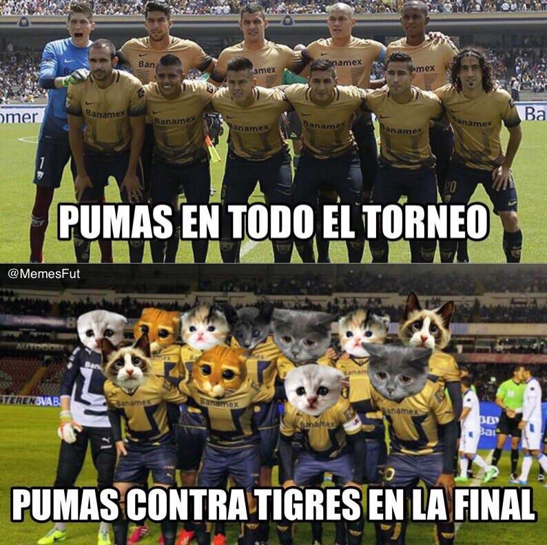 memes de pumas25