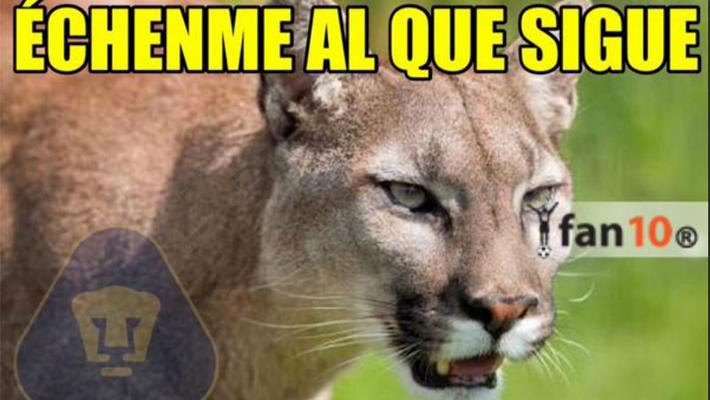memes de pumas36