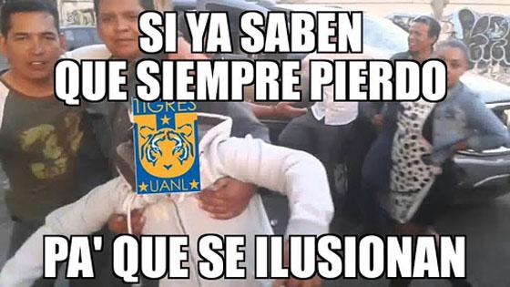 memes de tigres1