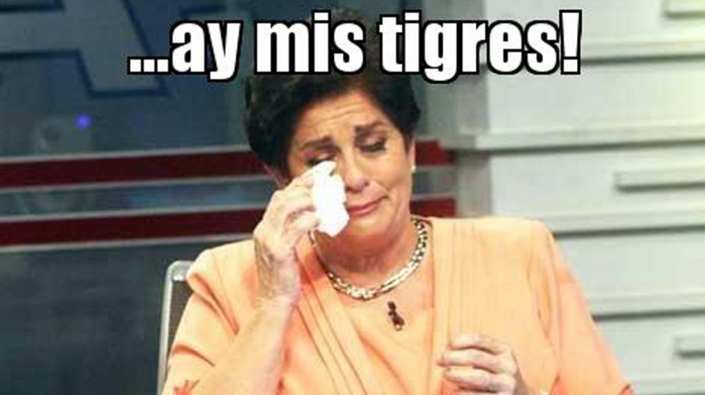 memes de tigres10