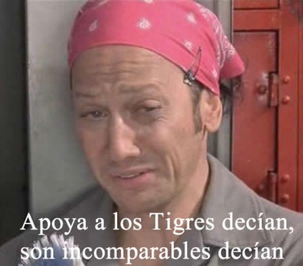 memes de tigres11