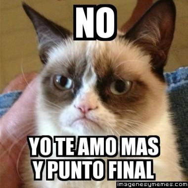 memes romanticos37