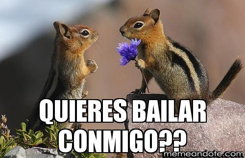 memes de baile8